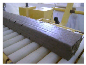 EXTRUSION WITH CELLULOSIC STANDARD ADDITIVE-745179-edited