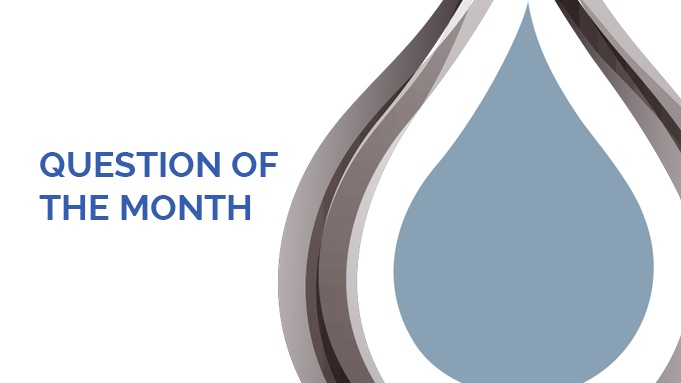 QUESTION OF THE MONTH DECORATIVE