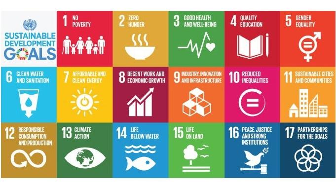 sustinable development goals pic